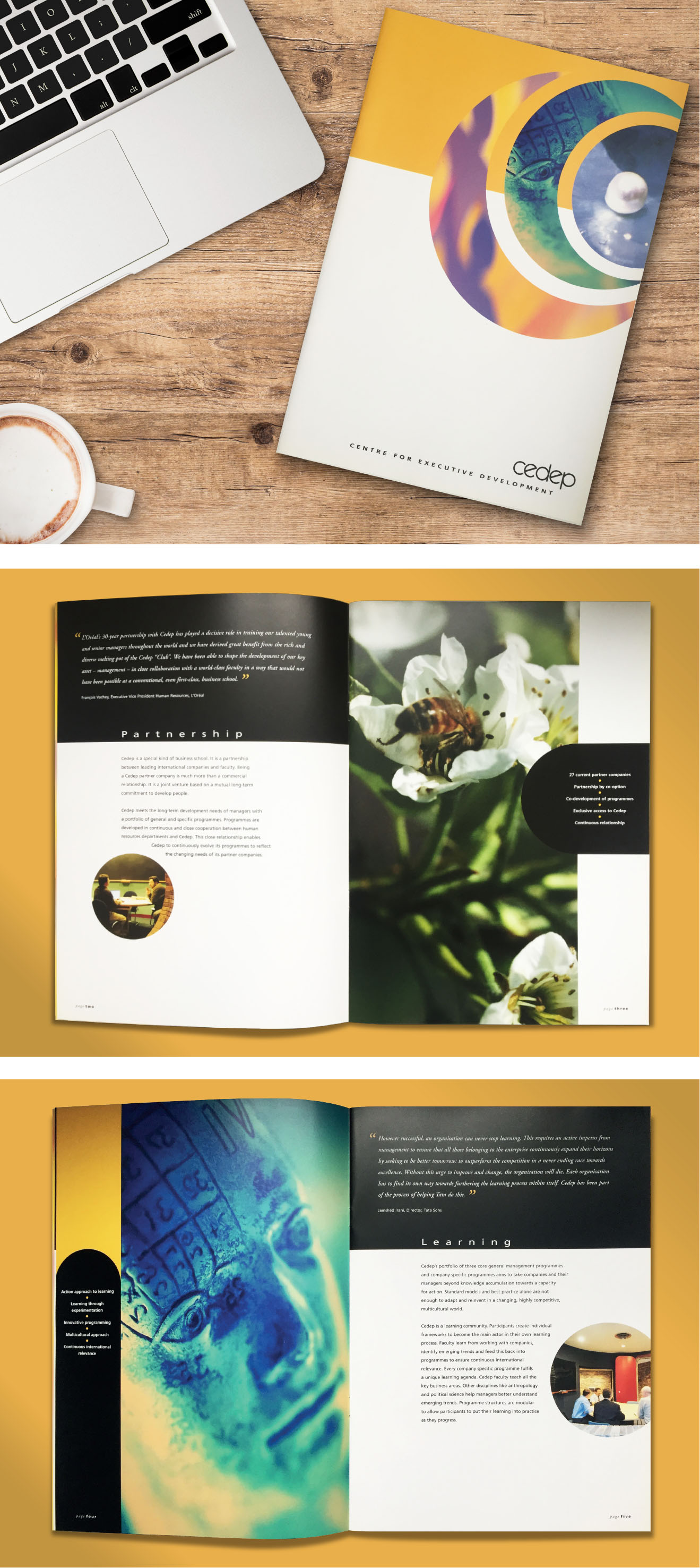 Image of CEDEP Brochure and sample spreads